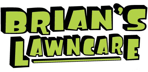 brians_large-short-min